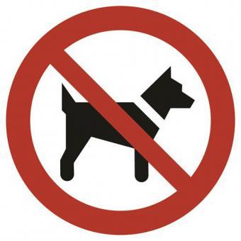 ASR A1.3 [P021] Mitführen von Hunden verboten