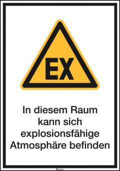 Kombischild ASR A1.3 [W021]/BGV A8 [W21] In diesem Raum kann sich explosionsfähige...etc.