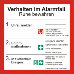 Schild Verhalten im Alarmfall mit Symbolen  nach ISO 7010